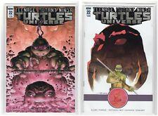 Teenage Mutant Ninja Turtles Universe #22 Idw Regular & Variant (5/16/18)