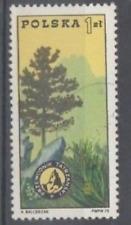 polish stamp - nature theme - tree - POLAND - see scan