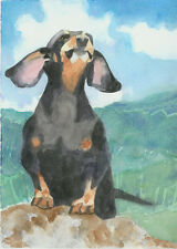 Giclee Print  Art Dog Watercolor Painting  Dachshund Pet Portrait