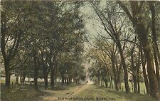 Vintage Postcard East Road Leading into Waukon Iowa Makee Township, Allamakee Co
