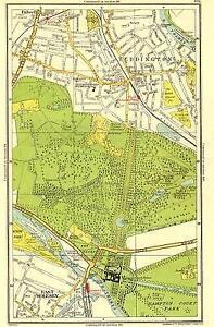 SURREY: East Molesey, Teddington, Fulwell, Hampton Court, Bushy Park, 1937 map