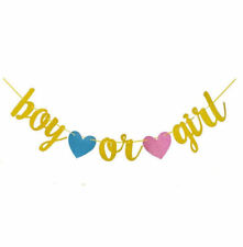 Boy or Girl Gender Reveal Baby Shower Decorations Gold Banner Bunting