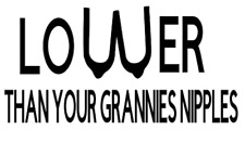 LOWER THAN YOUR GRANNIES NIPPLES truck sticker vinyl funny car decal euro vw low