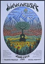 Emek Wakarusa 2011 Screen Print Poster Print June 2-5 Ozark Mountains Arkanas