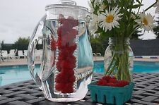 Prodyne Fruit Infusion 93 oz Flavor Tea Infuser Acrylic Pitcher Ice Water Citrus