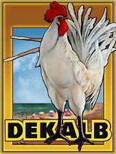Dekalb Chicken tin metal sign vintage style