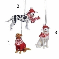 Dogs wearing scarf, hat & sweater Ornament