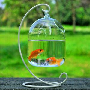 15cm Clear Round Glass Aquarium Hanging Fish Bowl Fish Tank Flower Plant Vase