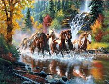 HORSES BORN TO BE FREE  MOUSE PAD  IMAGE FABRIC TOP RUBBER BACKED