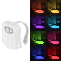 LED Motion Sensor Toilet Bowl Night Light 8 Colors Body Sensing Automatic Lamp