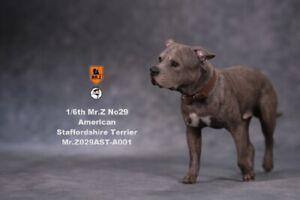 1/6 MRZ029 A001 Simulation Animal Dog Model American Staffordshire Terrier Figur