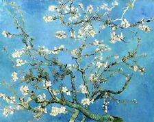 'Mandorlo in fiore quadro - Stampa d''arte su tela telaio in legno'