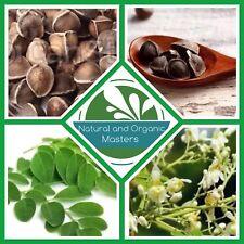 ✅MORINGA OLEIFERA SEEDS Miracle Tree Of Life -10 Fresh Organic Seeds- Quick Grow