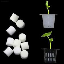 0f99 Mini Collar Foam Foam Soilless Hydroponic Insert Plant Mesh Net Pots