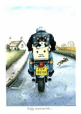Fluffy's trip to the vet motorcycle print by Mark Denman