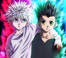 "24.25/"" x 36.25/"" Hunter X Hunter Group Anime Laminated Poster"
