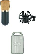 Large Diaphragm Golden Studio Mic for Vocal True Voice Flat Frequency Response