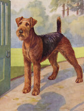 AIREDALE TERRIER CHARMING DOG GREETINGS NOTE CARD BEAUTIFUL STANDING DOG