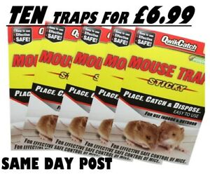 10 X Mouse Trap Mice Rat Stick Board 100% EFFECTIVE | NEXT DAY DELIVERY