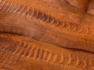 Ostrich Legs Skin Leather Chestnut Color (%100 Genuine Ostrich Leather)
