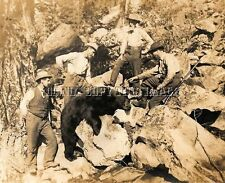 Antique Repro Early Image 8X10 Bear Hunting Photograph Winchester Rifle