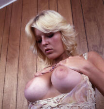 1970's BUSTY VINTAGE NUDE COLOR PHOTO 8. 5 X 11 GLOSSY QUALITY GUARANTEED!!