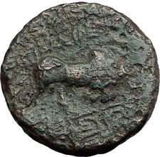 SELEUKOS I Nikator 312BC Genuine Ancient SELEUKID Greek Coin MEDUSA BULL i62836