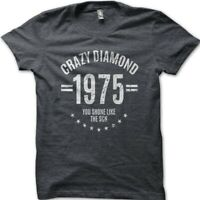 Crazy Diamond David Gilmour inspired Pink Floyd printed t-shirt 9029