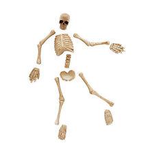 Dept 56 Halloween 2015 Boneyard Bag-O-Bones #4047604 Nib Free Shipping