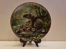 """Fischotter"" Otter 8"" Collector Plate"