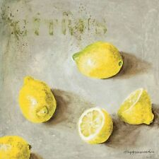Maritta Haggenmacher: Citrus Fertig-Bild 30x30 Wandbild Küche Obst