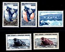 TAAF 1956 2-4,6-7 ** POSTFRISCH TADELLOS WALROSS etc (I3180