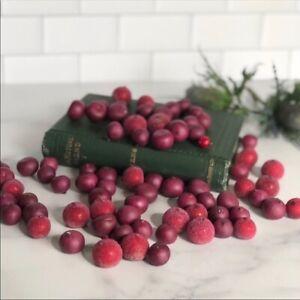 NEW POTTERY BARN Cranberries Decorative Vase Bowl Filler Christmas Fall Autumn