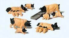 Preiser 10149 Domestic Pigs Of Schwabisch Hall 00/H0 Model Railway Animals