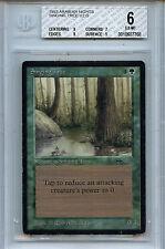 MTG Arabian Nights Singing Tree BGS 6.0 Magic Card WOTC 7768