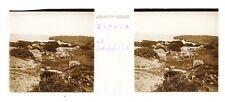 Tipaza Algérie Photo Plaque de verre Stereo