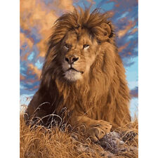 New Painting By Number Kits Grassland Lions Diy Picture Oil Painting On Canvas