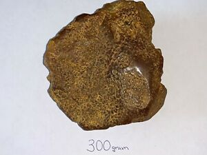BIG AMBER YOLK NUGGET 300 gr Baltic NATURAL SKIN  天然波罗的海琥珀蜜蜡 琥珀性质 琥珀蜜蜡原石 皇家琥珀