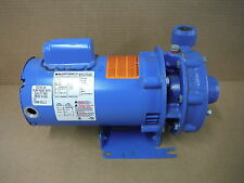 Goulds Water Technology Centrifugal Pump 1BF10712 3642 .75HP
