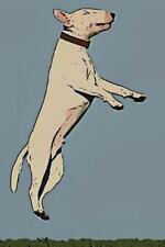Dog Lover's Journal: Bull Terrier : Dog Lover's Journal: 180 Page Lined...