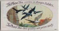 The Jackdaw And The Pigeons  Aesop's Fable Moral Story 1920s  Ad Trade Card