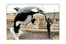 Banksy Killer Whale Out Of Toilet Poster Wall Art Prints Home Decoration