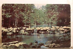 Arkansas AR Little Rock Boyle Park Postcard Old Vintage Card View Standard Post