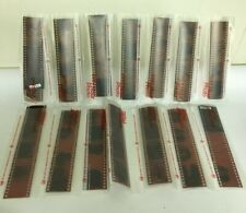 Vintage Lot Film Negative Strips Wedding Photos With Sleeves Crafts Art Archival