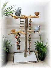 Freisitz für Papageien, Papageienspielzeug, ORIGINAL Java Holz, Hartholz, 165 cm