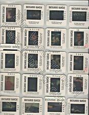 BUCKAROO BANZAI- 1983- PETER WELLER - LOT OF 21 ORIGINAL PUBLICITY SLIDES TRANSP