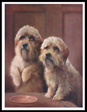 Dandie Dinmont Terrier Two Dogs Lovely Vintage Style Dog Print Poster