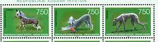 CANI - DOGS SOUTH OSSETIYA 1996 set
