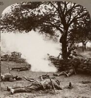 Price We Pay For Victory! Our Lads Who Fell in an Early Morning Raid. Stereoview