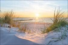 Fabelhafte VLIES FOTOTAPETE XXL Nordsee Strand Meer Dünen Sonne 8649
